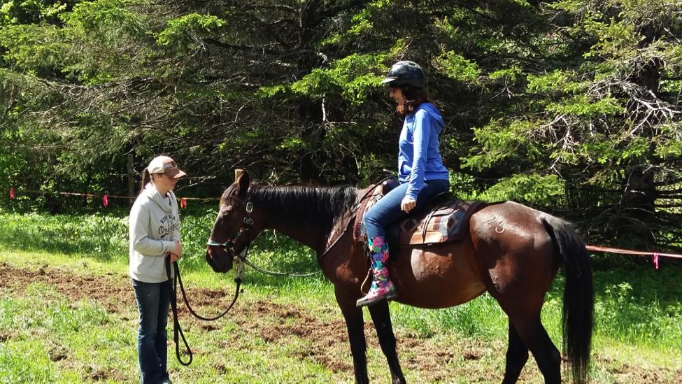 Méditation sur cheval